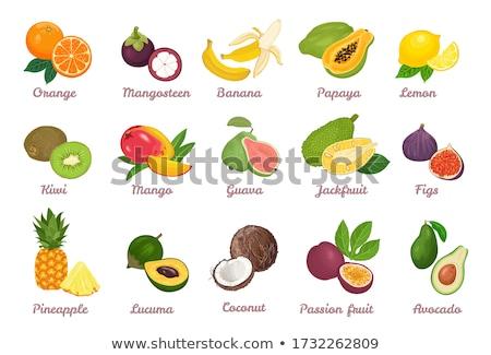 Mangosztán avokádó szett vektor ikonok ananász Stock fotó © robuart