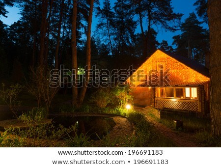 Forest house in the night coniferous forest Stock photo © barsrsind