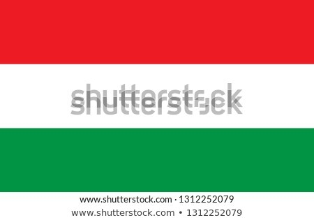 Hungary flag and hand on white background. Vector illustration Stock photo © butenkow