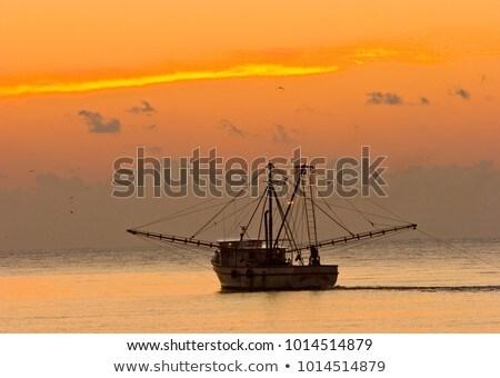 Karides tekneler gün batımı gökyüzü su güneş Stok fotoğraf © saje