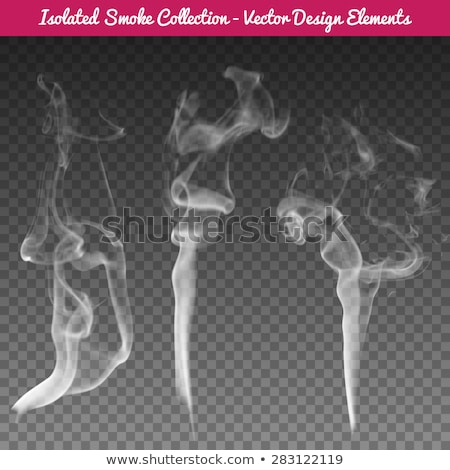 A Cigarette and Smoke Template Stock photo © bluering