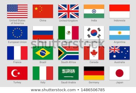 Photo stock: Vecteur · drapeaux · monde · carte · pavillon