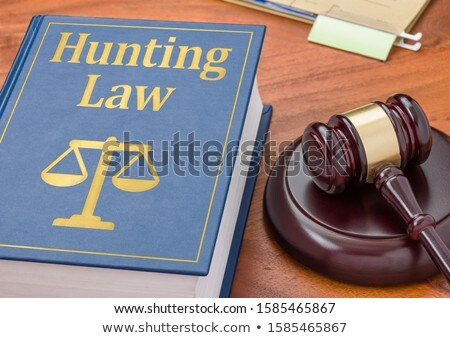 A law book with a gavel  - Hunting Law Stock photo © Zerbor