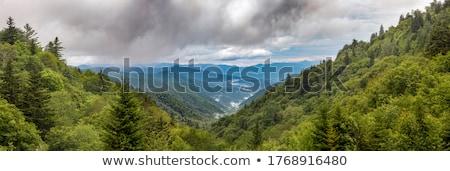 Mountains storm landscape Stock photo © photocreo