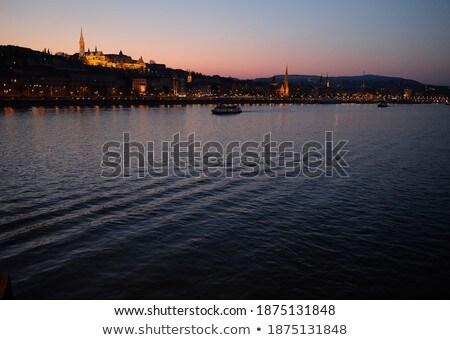 синий Purple берег реки камней cyan Дунай Сток-фото © simply