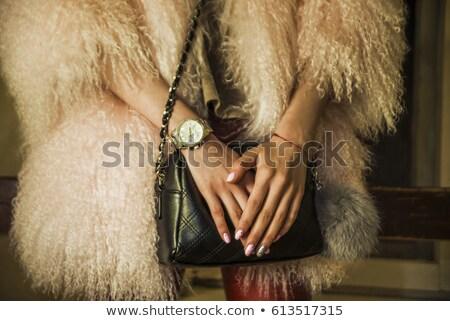 красивая · девушка · красный · шуба · сумку · портрет - Сток-фото © fanfo