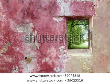 gebarsten · roze · verf · textuur · oude · muur - stockfoto © lunamarina