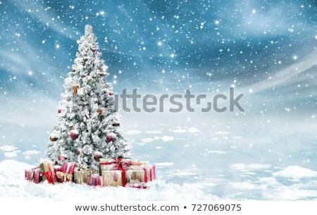 art Blue Christmas tree; Snowy winter Christmas Landscape Stock photo © Konstanttin