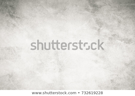 Grunge ecset festett vektor sablon grunge textúra Stock fotó © biv