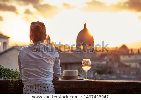 reiziger · vrouw · genieten · zee · achteraanzicht - stockfoto © iko