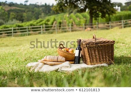 Stockfoto: Picknick · wijngaard · mooie · glimlachend · paar · proeverij