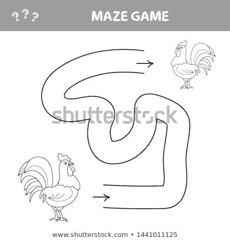 Spel kip doolhof vinden manier ander Stockfoto © natali_brill