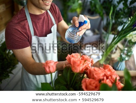 Florist spraying a bunch of flowers with water Stock photo © photography33