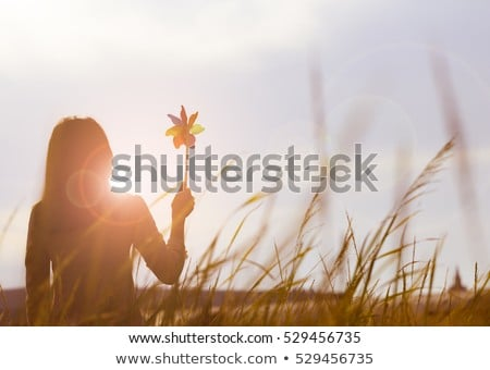 woman with pinwheel Stock photo © courtyardpix