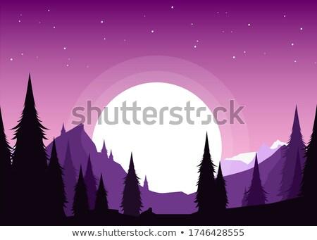 Panorama bergen sneeuw blauwe hemel ijs rock Stockfoto © smuki