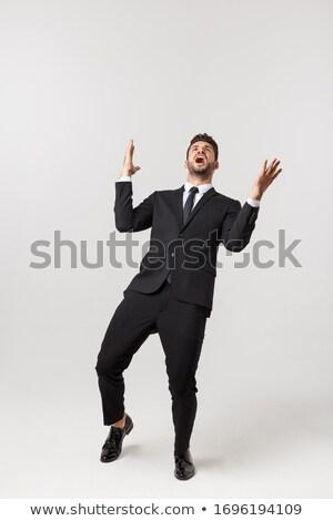Portret wesoły biznesmen stałego biały działalności Zdjęcia stock © deandrobot