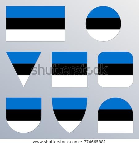 Vierkante sticker vlag Estland geïsoleerd witte Stockfoto © MikhailMishchenko