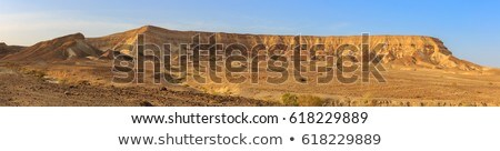 negev desert landscape near the dead sea stock photo © zhukow