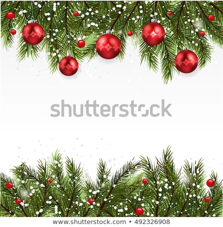 christmas fir tree branch covered by snow card stock photo © karandaev