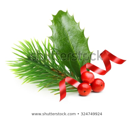 Red Ribbon With Holly Berry And Firtree Stock photo © barbaliss