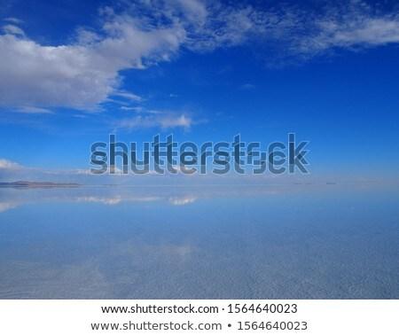 sivatag · só · fehér · tájkép · világ · háttér - stock fotó © boggy