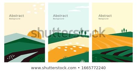 Naturelles résumé écologique fécondité organique Photo stock © RAStudio