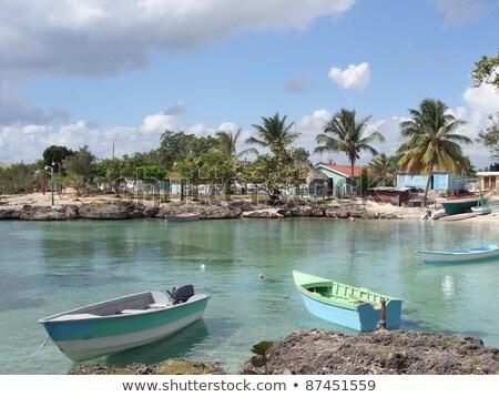 Dominican Republic Waterside Scenery Photo stock © PRILL