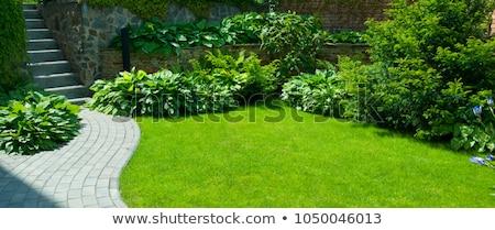 Steen tuin foto witte zwarte stenen Stockfoto © Dermot68