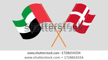 Объединенные Арабские Эмираты царство Дания флагами головоломки изолированный Сток-фото © Istanbul2009