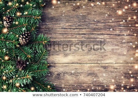 christmas fir branches on a wooden background stock photo © valeriy