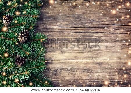 Рождества · ель · Ягоды · древесины · дизайна - Сток-фото © valeriy