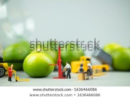 fresco · verde · crescente · Califórnia · árvore · comida - foto stock © emattil
