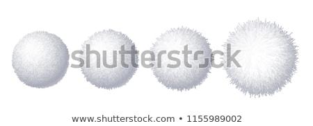 вектора набор красочный мех пушистый Сток-фото © freesoulproduction