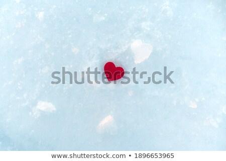 love concept red heart among ice stock photo © arsgera