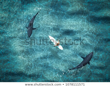 A Women Surrounded By Sharks Stock photo © solarseven