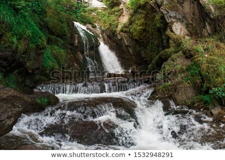 водопада озеро воды лес красоту зеленый Сток-фото © olira