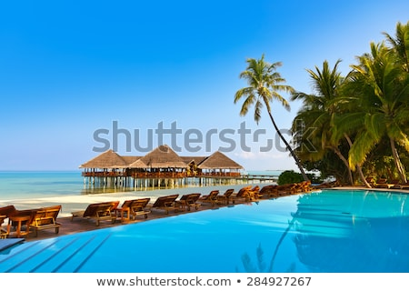Zonnebank paraplu Maldiven houten tropisch strand zomer Stockfoto © bloodua