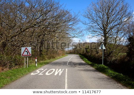 an english country road in cornwall and a slow sign stock photo © latent