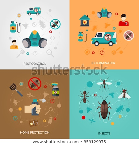 Rodents pest control service abstract concept vector illustration. Stock photo © RAStudio