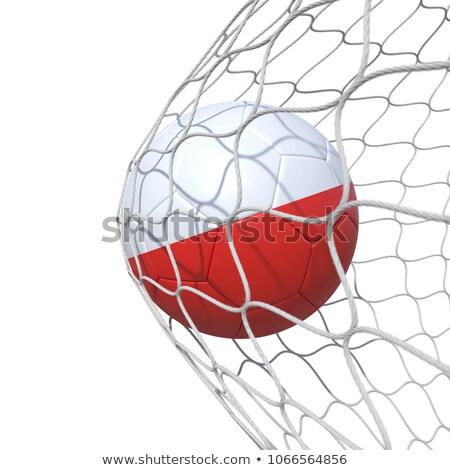 polish soccer ball stock photo © creisinger