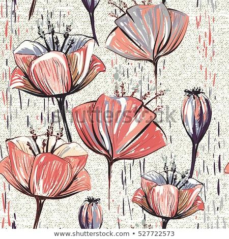 бесшовный · вертикальный · границе · тюльпаны · красный - Сток-фото © nurrka