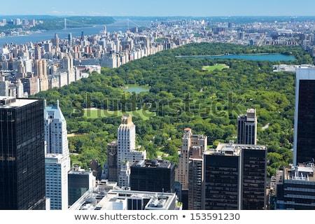 New York City Manhattan Central Park panorama schemering winter Stockfoto © rabbit75_sto
