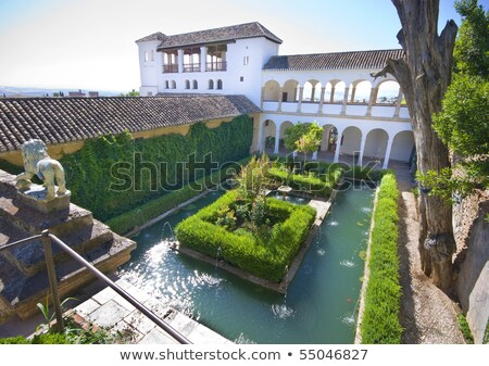 Courtyard and pool in the Generalife, Alhambra, Granada, Spain Stock photo © HASLOO