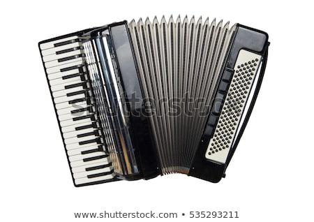 Accordeon geïsoleerd sleutel retro geluid spelen Stockfoto © ozaiachin