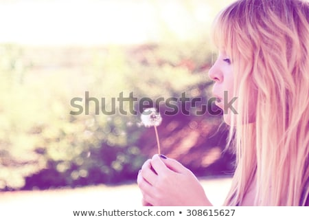 making a wish woman blowing a dandelion stock photo © mangostock