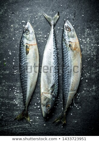 вкусный морепродуктов продовольствие здоровья кухне Сток-фото © Armisael