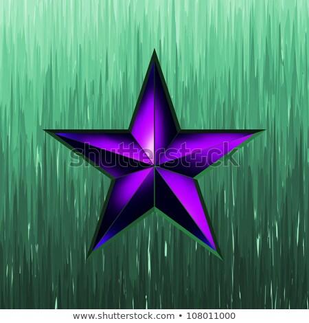 illustration of a purple star on steel. EPS 8 Stock photo © beholdereye
