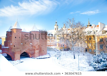 Varsovie baroque palais touristiques lieu Photo stock © linfernum