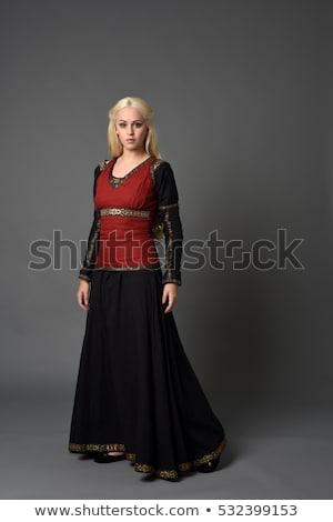 Lady · Knight · женщину · кровь · металл · зима - Сток-фото © gsermek