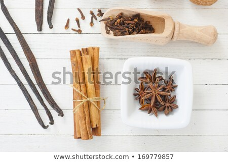 Spice scoop with cloves, star anise and cinnamon sticks Stock photo © Zerbor